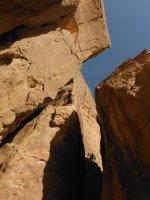 Le Bal des Chameaux, Barrah Canyon, Wadi Rum, Jordanie 11