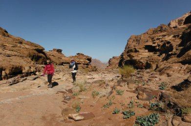 16. lit du wadi