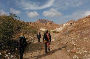 Wadi Tibn, Wadi Sabra, Petra, Jordanie 23
