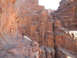 Rakabat Canyon, Jebel Um Ishrin, Wadi Rum, Jordanie 23