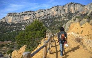 La Morera de Monsant, Catalunya 25