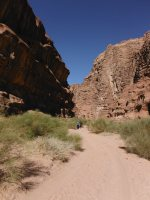 Rakabat Canyon, Jebel Um Ishrin, Wadi Rum, Jordanie 37