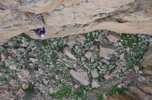Les Dessous de la Princesse, wadi Naqab, Émirats 19