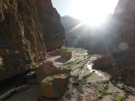 La Princesse a la Dalle, Wadi Naqab, Émirats 6
