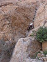 La Princesse a la Dalle, Wadi Naqab, Émirats 7