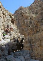 Leopard Canyon, Ras Al Khaimah 26