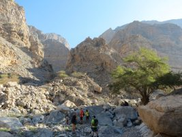 Leopard Canyon, Ras Al Khaimah 8
