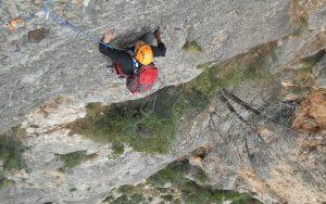 L'avi Trepador a la Codolosa, Montserrat, Espagne 13