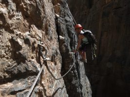 Snake canyon, Jebel Akhdar 30