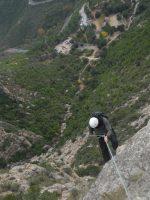 L'avi Trepador a la Codolosa, Montserrat, Espagne 17