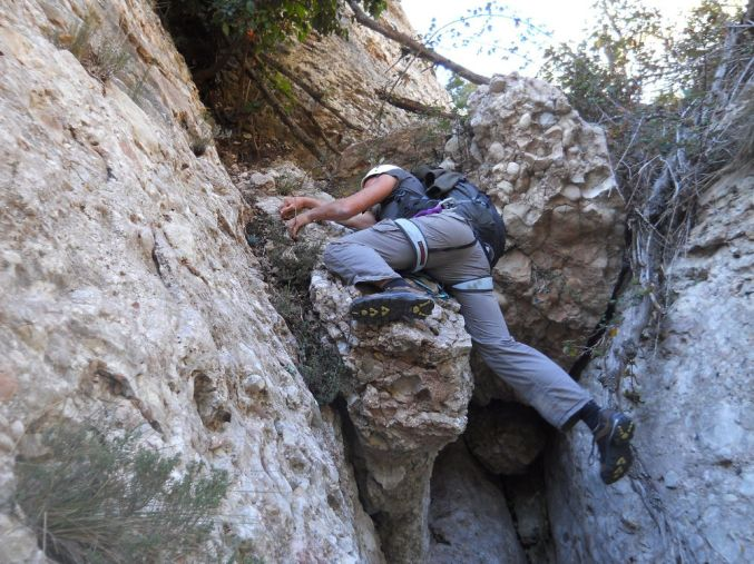 Torrent Fondo, Montserrat 28