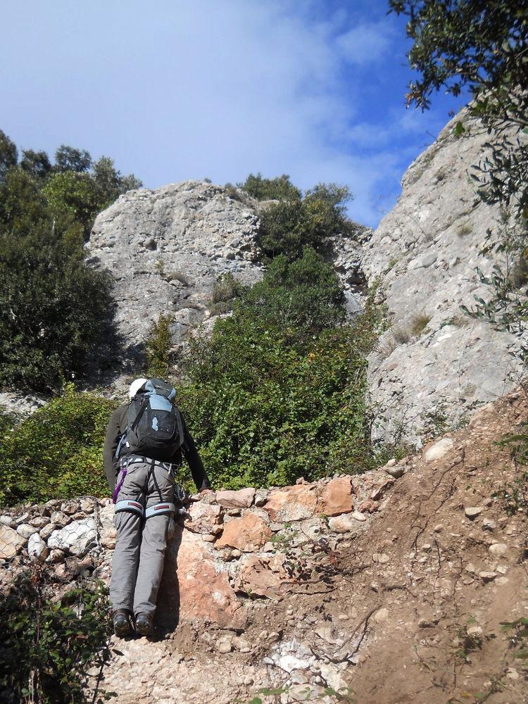 Torrent Fondo, Montserrat 29