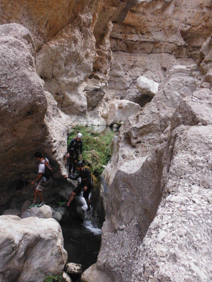 Wadi Ta'ab, Hajar Oriental 32