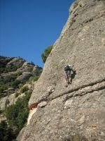 Aresta Brucs a Can Jorba, Montserrat, Espagne 4