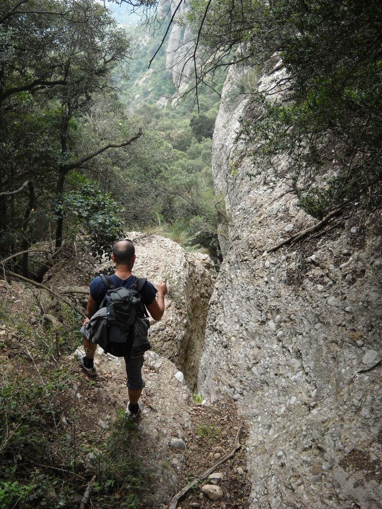 Torrent del Lloro, Montserrat 4