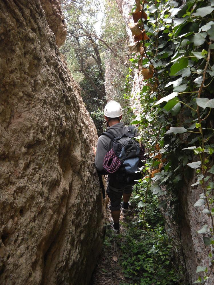 Torrent del Lloro, Montserrat 7
