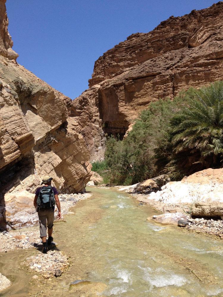 Wadi Zerqa Ma'in, Moab 11