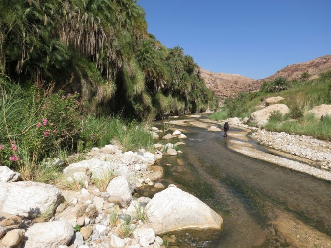 Wadi Hasa, Moab 18