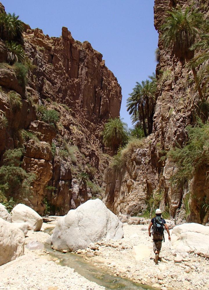 Wadi Kerak, Moab 22