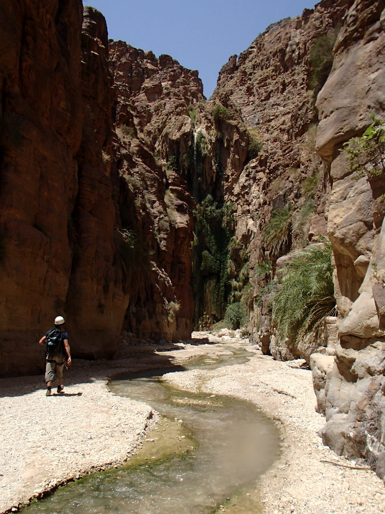 Wadi Kerak, Moab 31