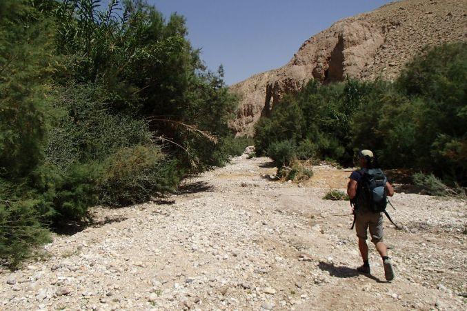 Wadi Kerak, Moab 7