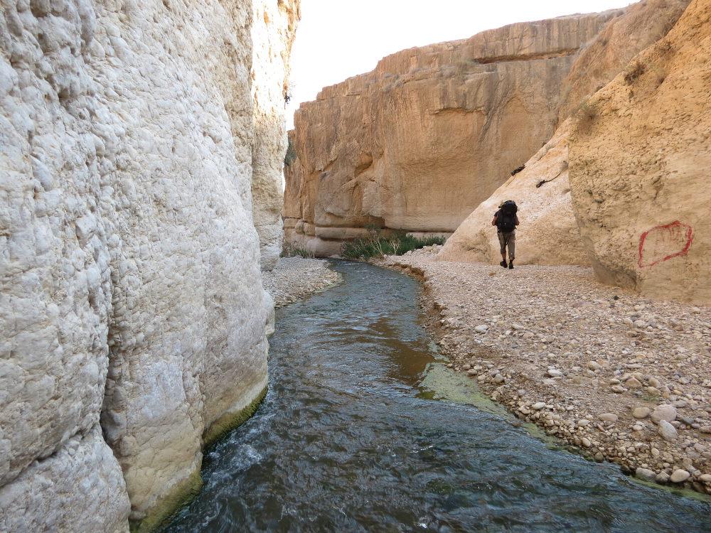 Wadi Hasa, Moab 7