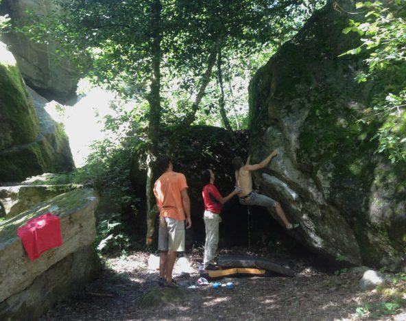 Ambiance forestière de la Cours des Miracles