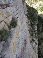 Camel a la Roca dels Arcs, Vilanova de Meïa, Espagne 9