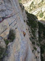 Camel a la Roca dels Arcs, Vilanova de Meïa, Espagne 10