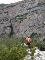 Camel a la Roca dels Arcs, Vilanova de Meïa, Espagne 16