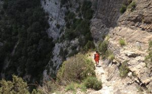 Terra de Dinosaures a la Paret Bucòlica, Oliana, Espagne 21