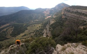 Dièdre Farreny a la Roca Alta, Vilanova de Meïa, Espagne 23