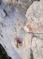 Camel a la Roca dels Arcs, Vilanova de Meïa, Espagne 2