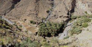 Finger Rest, wadi Nakhur, Al Hamra, Oman 20