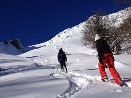Cagire hivernale, Le Mourtis, Ariège, France 11