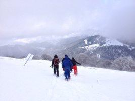 D'Artigue à l'Escalette, Le Mourtis, Ariège, France 20