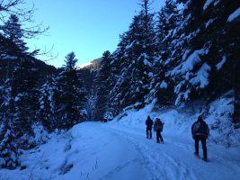 Tuc du Plan de la Serre, Ariège 6