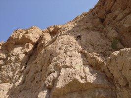 Wadi Dayqah sport climbing, Quriyat, Oman 7