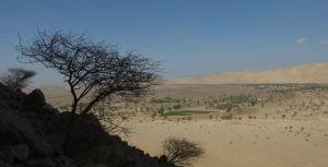 Wonderwall, Al Ain, Buraimi, Émirats Arabes Unis, Oman 15