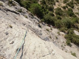 Basalm del Tigre a la paret Bucolica, Oliana, Espagne 4