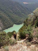 Basalm del Tigre a la paret Bucolica, Oliana, Espagne 21