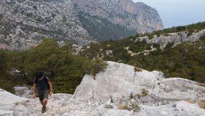 Monte Oro, Santa Maria Navarrese, Ogliastria, Sardaigne 15