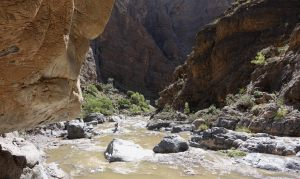 Wadi Saada, Sayq Plateau 25