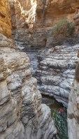 Wadi Qasheh, Sayq Plateau 38