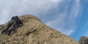 Aresta Arcarons als Plecs del Llibre, Montserrat, Espagne 11