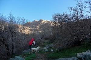 Kolak Chal trek, Teheran, Iran 4