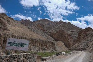Zinchan, Markha Valley & Zalung Karpo La, Ladakh 3