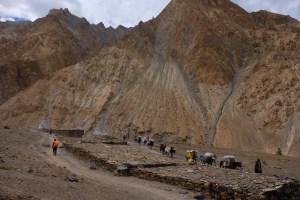 Zinchan, Markha Valley & Zalung Karpo La, Ladakh, Inde 36