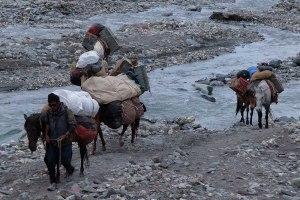 Zinchan, Markha Valley & Zalung Karpo La, Ladakh, Inde 53