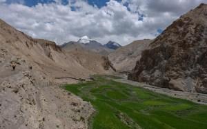 Zinchan, Markha Valley & Zalung Karpo La, Ladakh, Inde 55